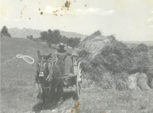 En aquesta foto és veu un noi que és diu Thomas. Abans el vehicle de transport era el ruc!
